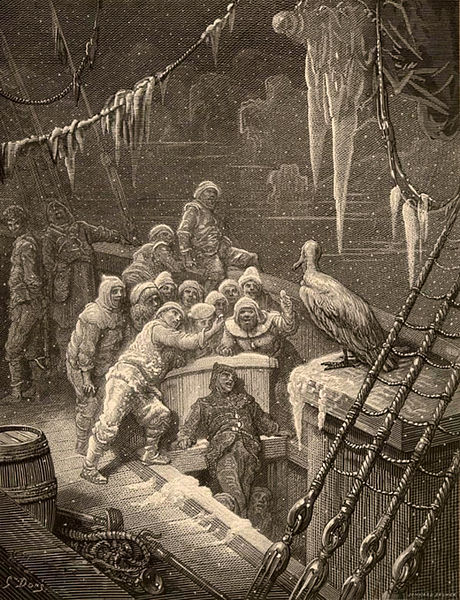 The Albatross by Gustave Doré