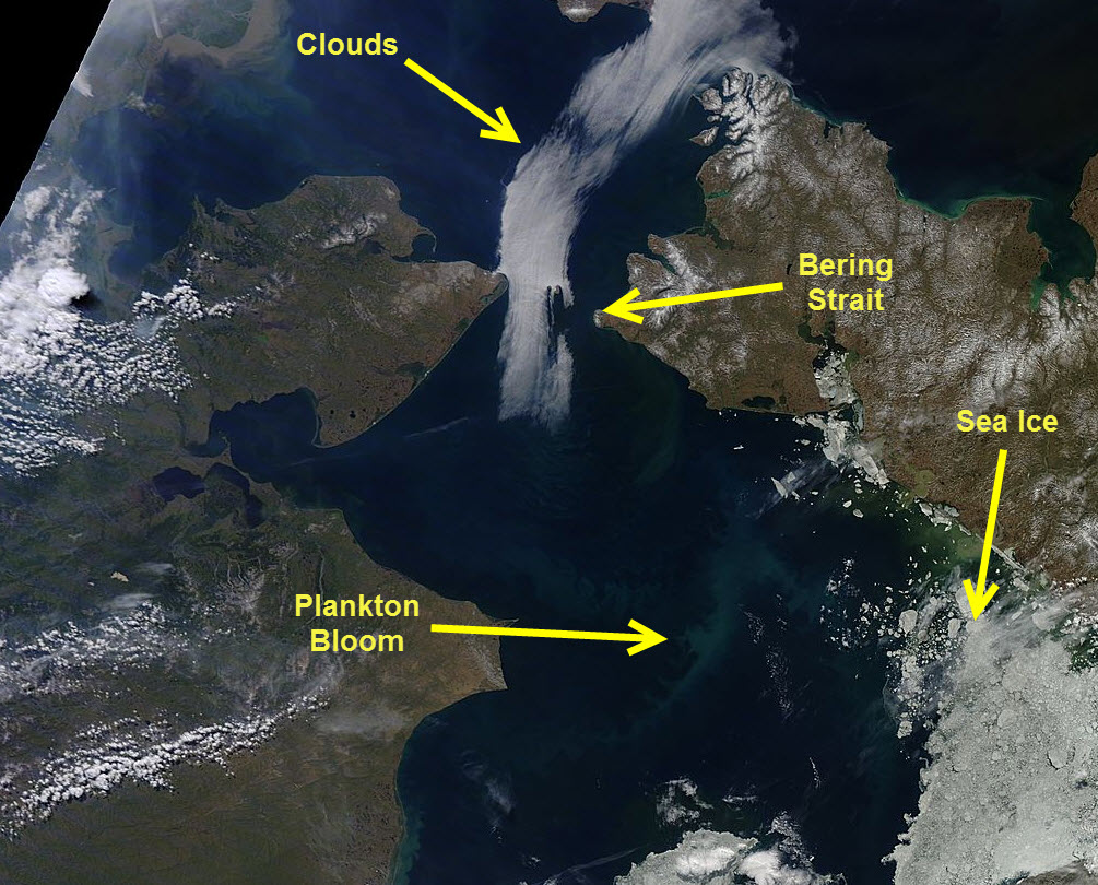 Plankton bloom in the Chukchi Sea, as seen in the MODIS sensor on 23 June 2015.
