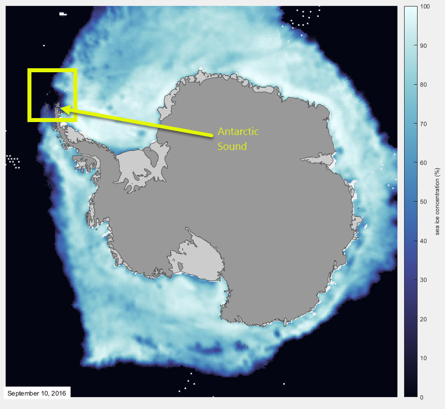 The sea ice extent around Antarctic 10 September 2016. Yellow box is roughly where the MODIS image is, and Antarctic Sound is labelled. Data from DMSP SMMI