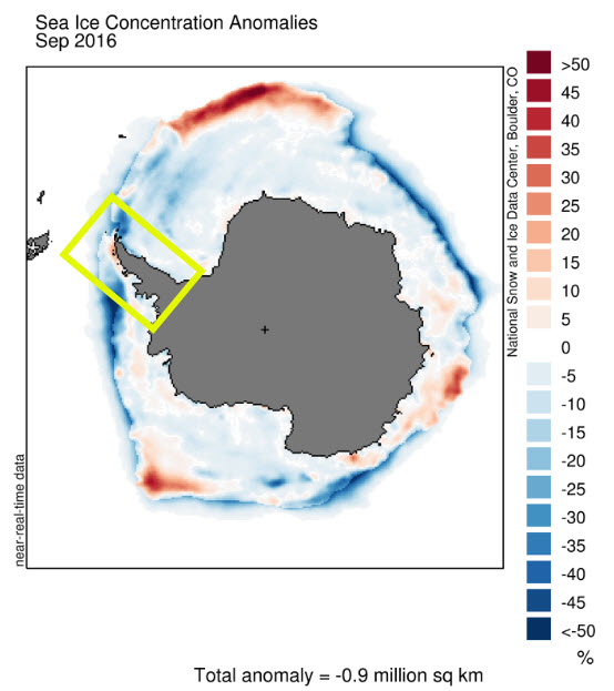 Antarctic sea ice concentration anomaly for Sep 2016. Image from NSIDC