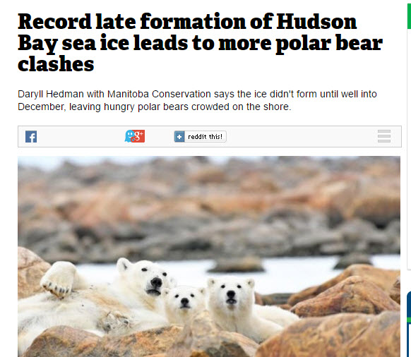 Record late formation of Hudson Bay sea ice leads to more polar bear clashes. The Canadian Press Published on Thu Dec 15 2016.