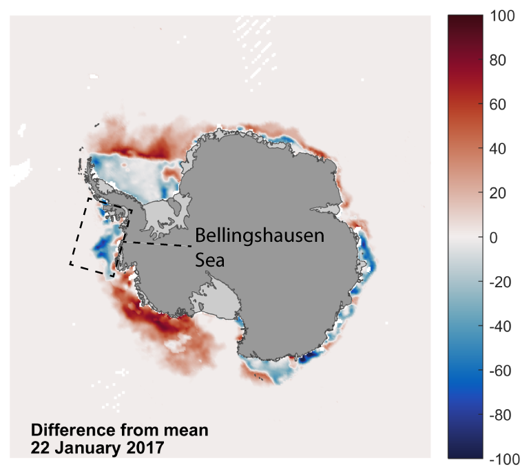Sea ice extent is currently relatively high in the Bellingshausen Sea.