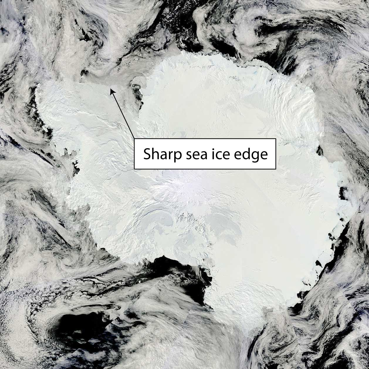MODIS image from the TERRA satellite 23 January 2017. The sea ice edge in the Weddell Sea is very sharp.