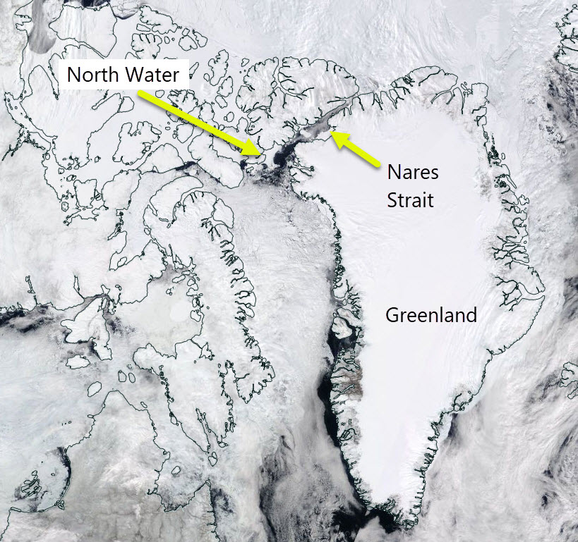 The location of North Water polynya. Image from MODIS data 14 May 2017.