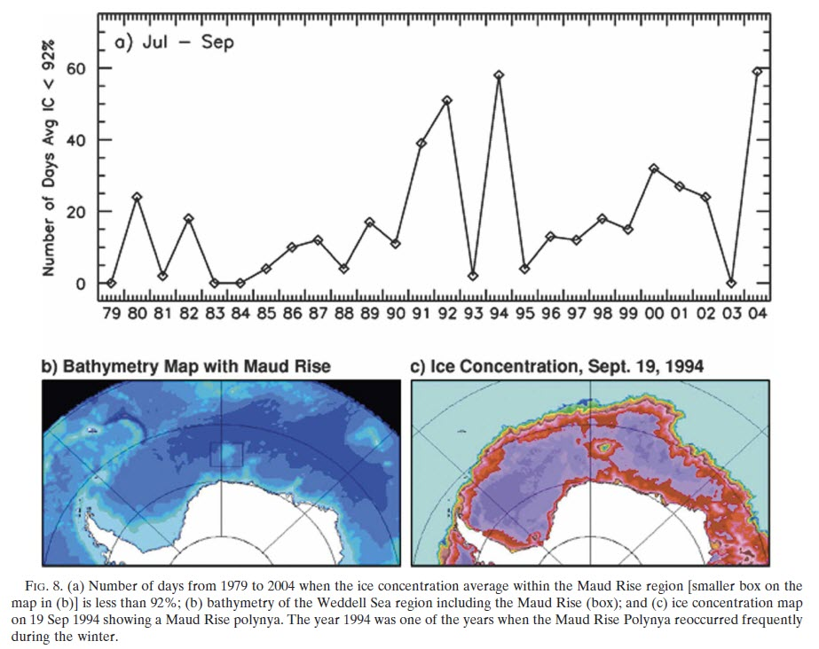 A time series of low concentration sea ice from the Weddell Polynya at Maud Rise from Gordon et al 2007.
