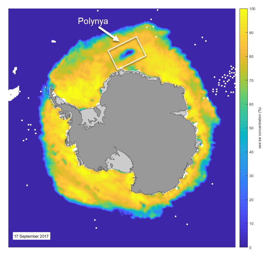 The location of the polynya over Maud Rise. Sea ice data from DMSP SMMI.